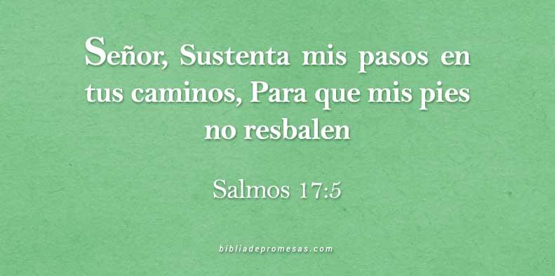 SALMOS-17-5