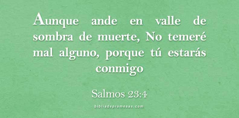 aa-SALMOS-23