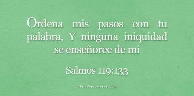 Salmos-119-133