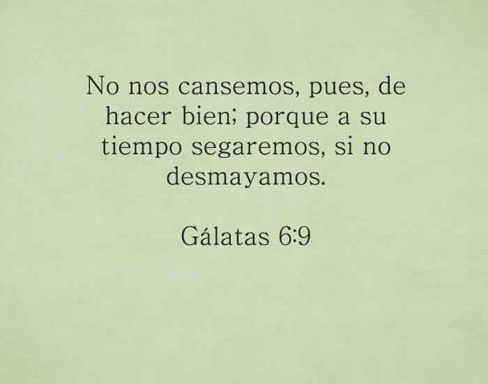 galatas-6-9-devocional-de-la-noche