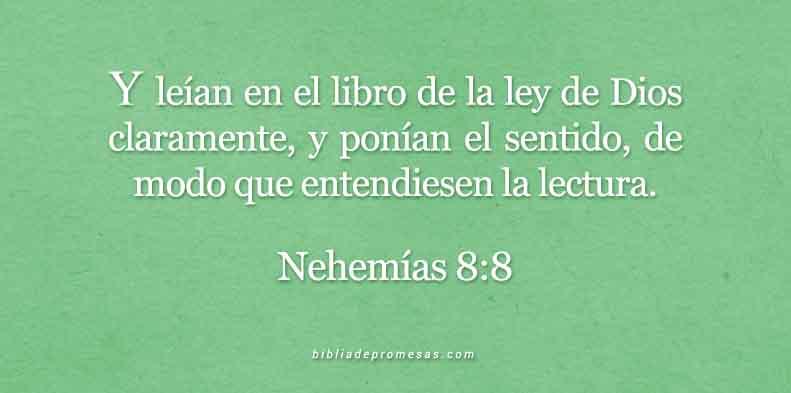 NEHEMIAS-8-8BBPROM