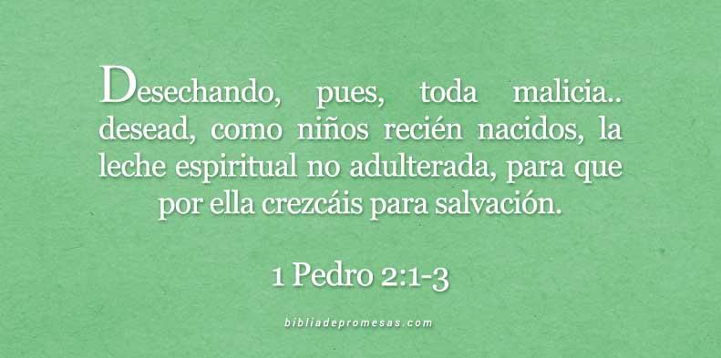 1-Pedro-2-1-3-dev