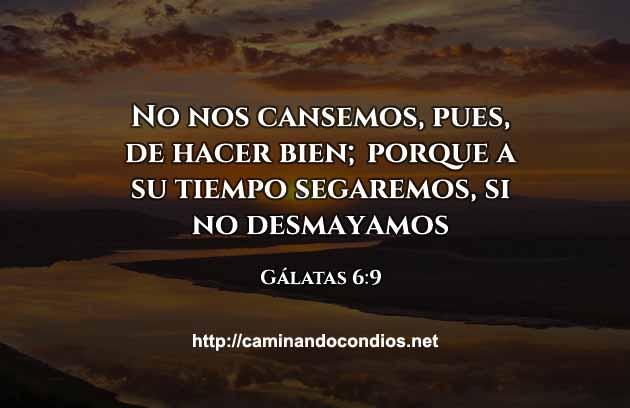 galatas-6-9-oracion-de-la-manana