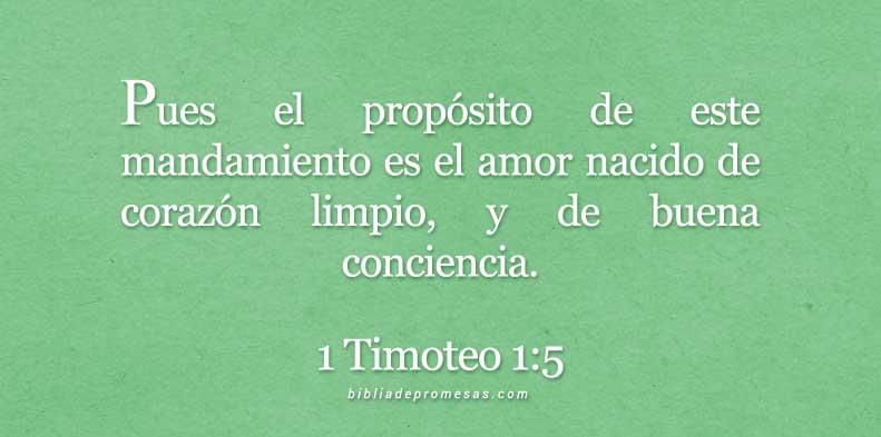 1-timoteo-1-5-dev