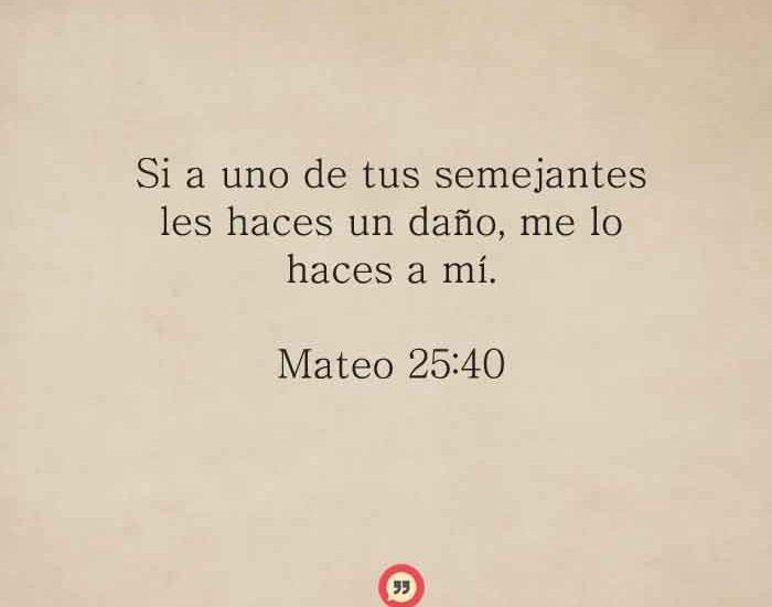mateo-25-40-dev