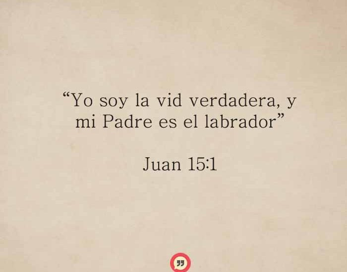 Juan151-dev
