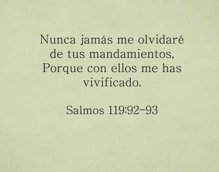 salmos119-92-93-dev