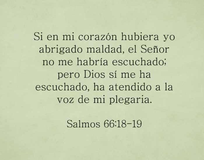 salmos661819-dev