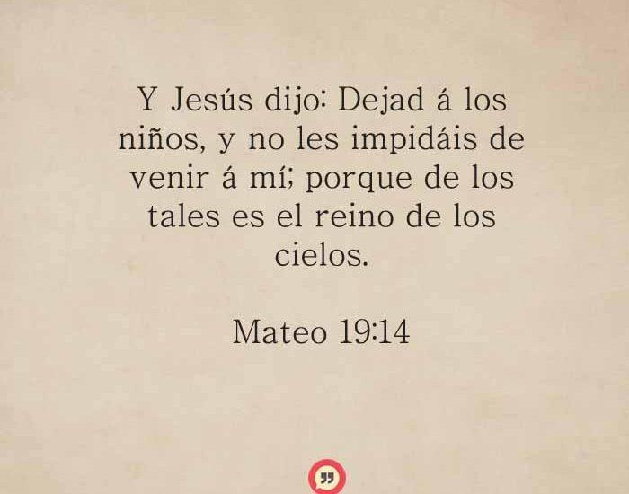 mateo19-14-dev