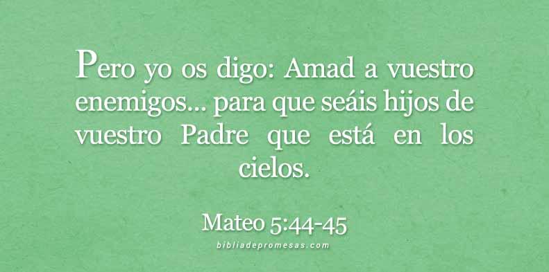 mateo544