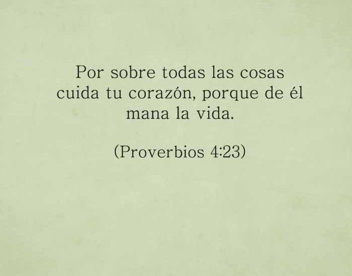 proverbios423-dev