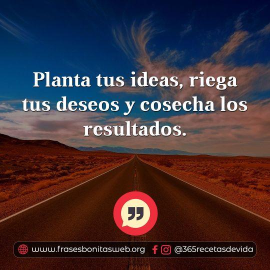 11-planta-tus-ideas