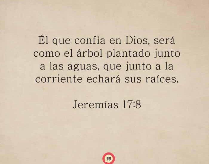 Jeremias-17-8-dev