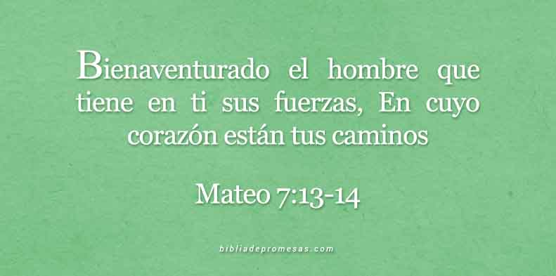 mateo7-13-147-dev