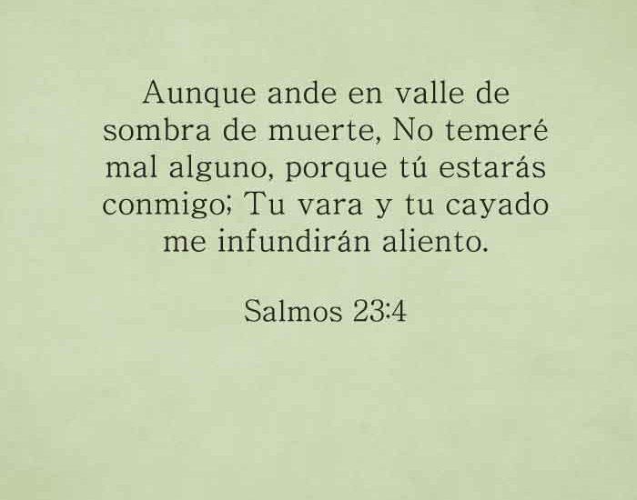 salmos23-4-dev-dev