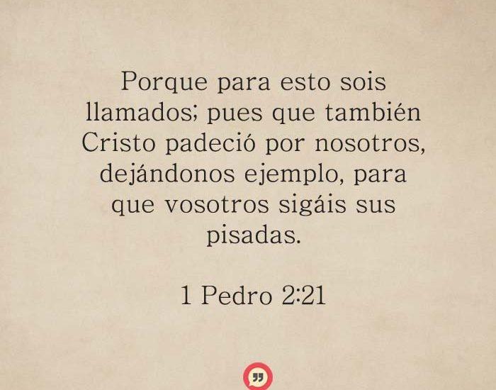 1-Pedro-2-+21-dev