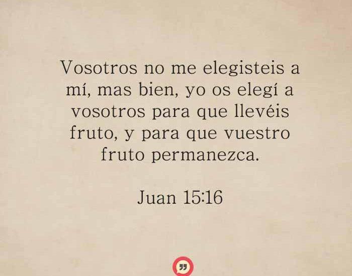 Juan15-16-dev