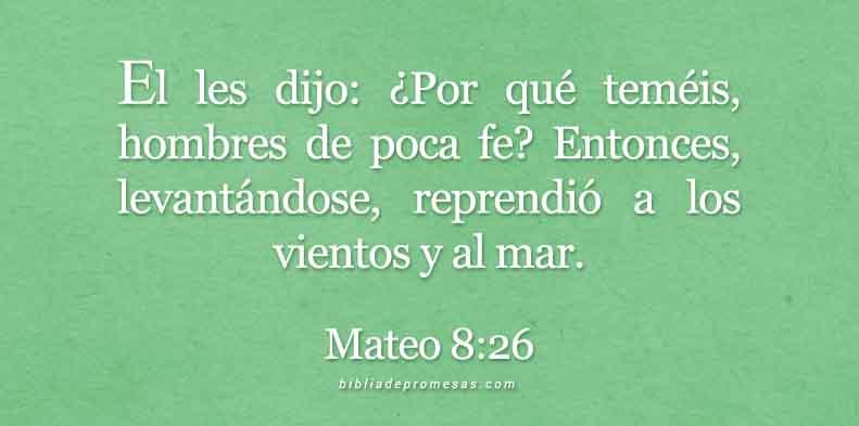 Mateo-8-26-dev