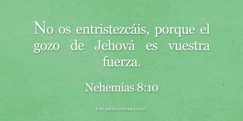 nehemias810bbpromn