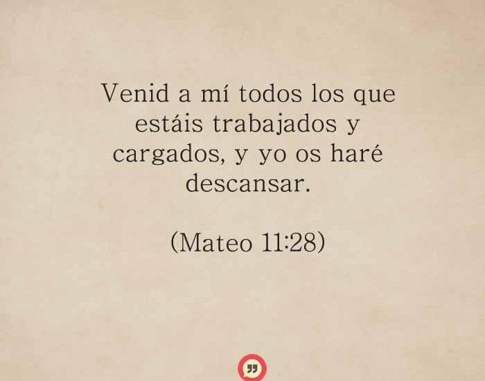 mateo11-28-dev