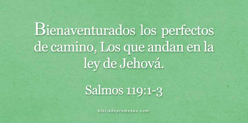 salmos119-1-3