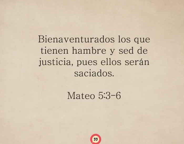 mateo536
